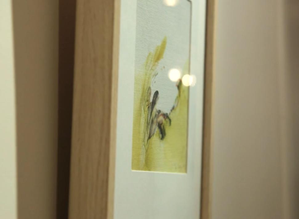 Exposition de Yu Zhao à la galerie-librairie Impressions, 2013